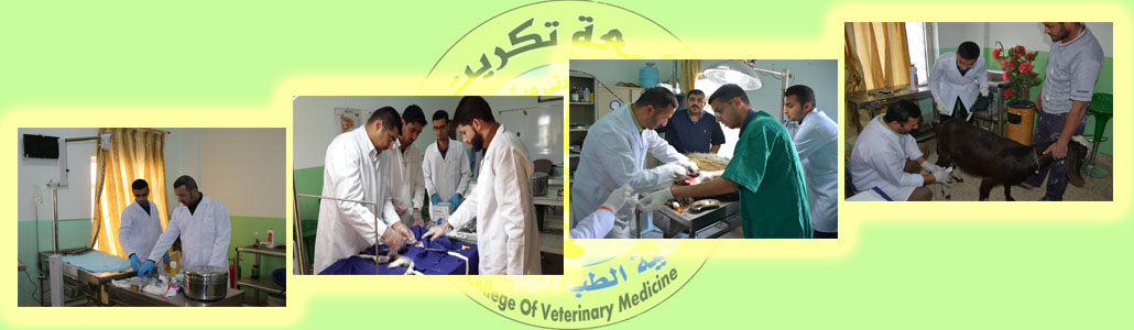 Branch of Internal Medicine, Surgery and Obstetrics